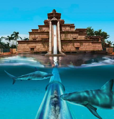Drop slide in Aquaventure Dubai running through shark tank  - Bachelorette Party Activities for the Active Bride
